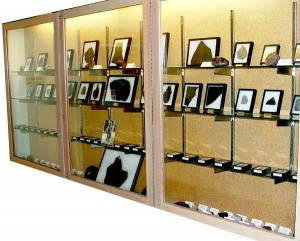 the Gordon G. Goles Meteorite Collection in Cascade Hall.