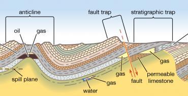 Petroleum trap